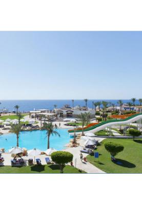 Египет! Горящий тур на вылет 07.11 в отеле Shores Amphoras Resort!