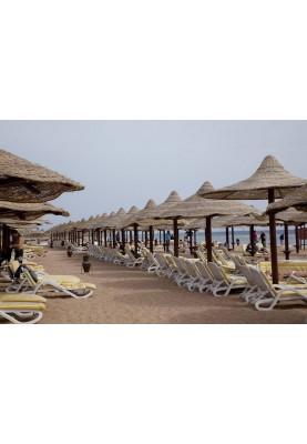Odihna in Egipt! Vacanta All Inclusive la hotelul Coral Beach Resort Montazah 4*