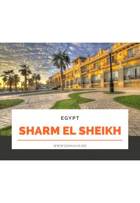 EGIPT! Sharm el Sheikh! de la 388 €