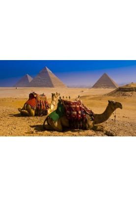 EGIPT! din 24.10.19! WOW PREȚ! de la 463 €!