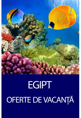 Tur in Egipt! Oferte de vacanta All Inclusive