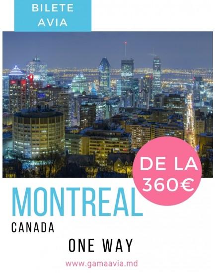 Chișinău - Montreal
